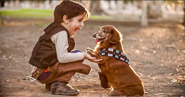Qué hacer para que los niños cuiden a sus mascotas