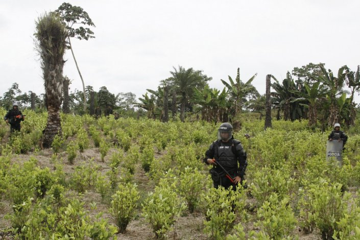 Colombia: Profesor indígena y defensor de la tierra asesinado